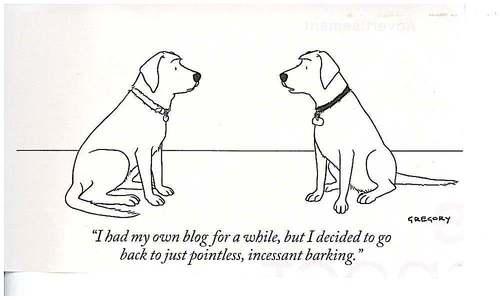dogblog.jpg
